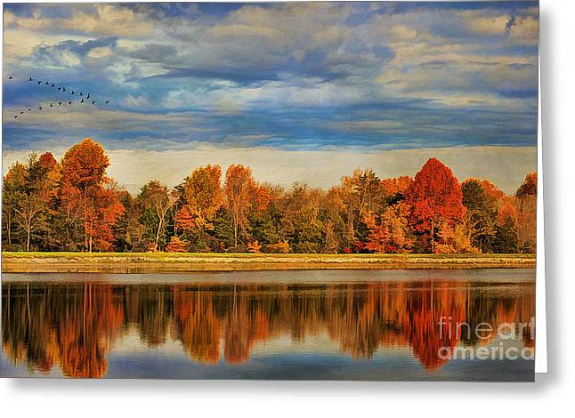 Morning Reflections Greeting Card by Darren Fisher