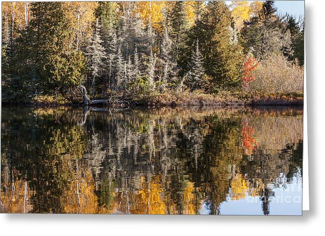 Morning Reflections Greeting Card by Donna Crider