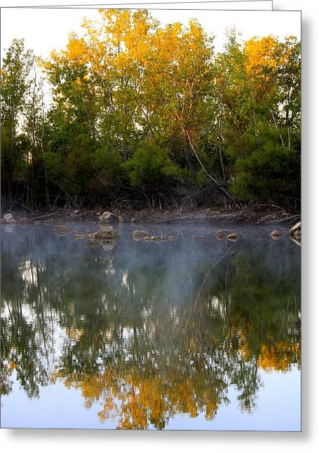 Morning Reflections Greeting Card by Jennifer  Lane