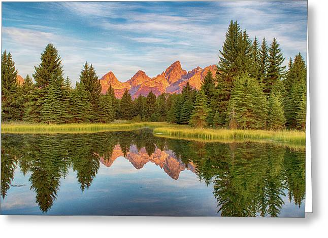 Greeting Card featuring the photograph Morning Reflections by Mary Hone