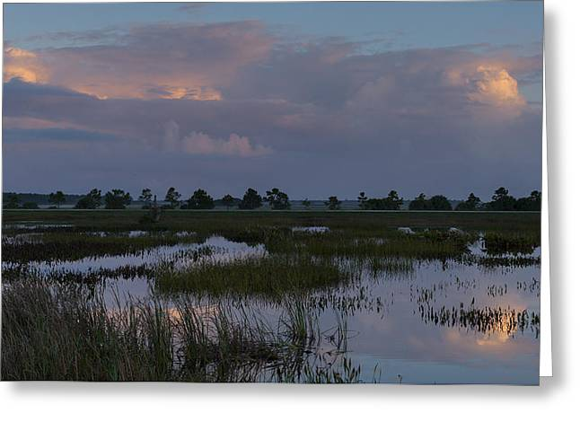 Morning Reflections Over The Wetlands Greeting Card
