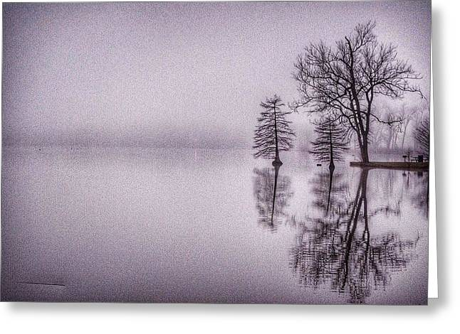 Morning Reflections Greeting Card by Sumoflam Photography