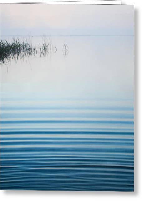 Morning Ripples Greeting Card by Parker Cunningham