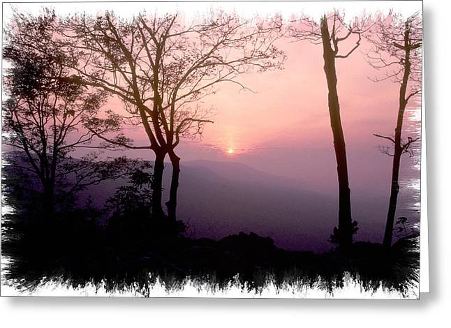 Morning Rose - Catoctin Mountains - Frederick County Maryland Greeting Card by Michael Mazaika