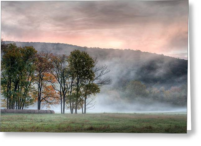 Morning Serenity Greeting Card by James Barber