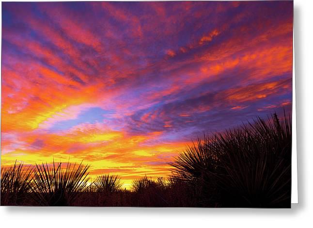 Morning Skies Greeting Card