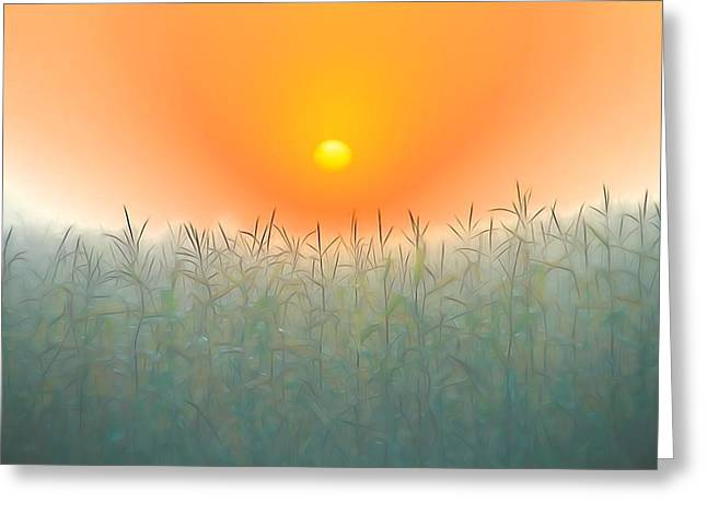 Morning Sky On The Farm Greeting Card