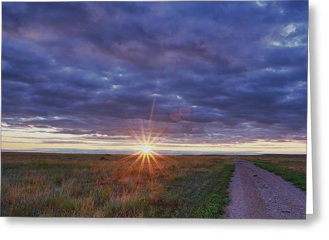 Morning Starburst Greeting Card by Monte Stevens