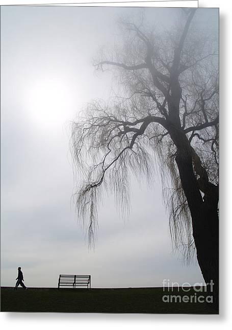 Morning Sun Tries To Break Through The Mist. Greeting Card by Emilio Lovisa