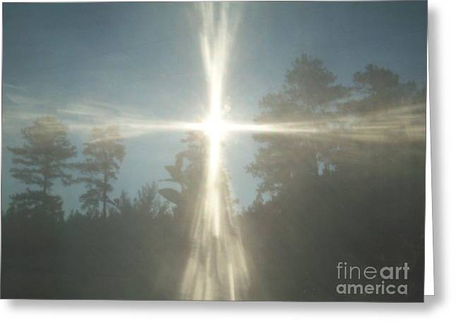 Morning Sunlight Greeting Card