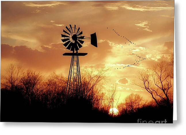Morning Sunrise Greeting Card by Anthony Djordjevic