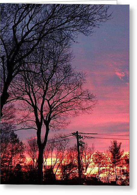 Winter Morning Sunrise  Greeting Card by Gina Sullivan