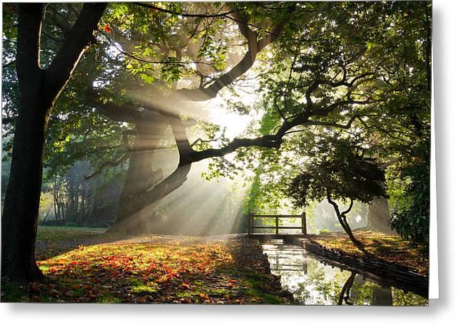 Morning Sunrise In Hampden Park Greeting Card