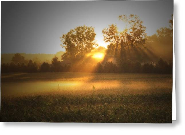Morning Sunrise On The Cornfield Greeting Card by Cathy  Beharriell