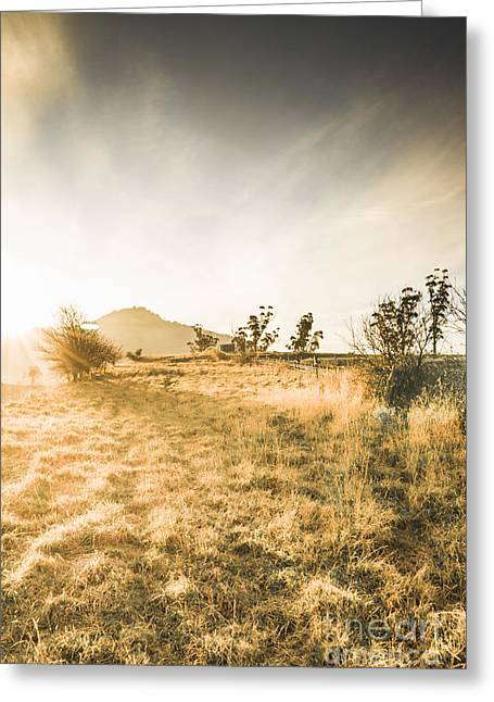 Morning Tasmanian Fog Landscape Greeting Card
