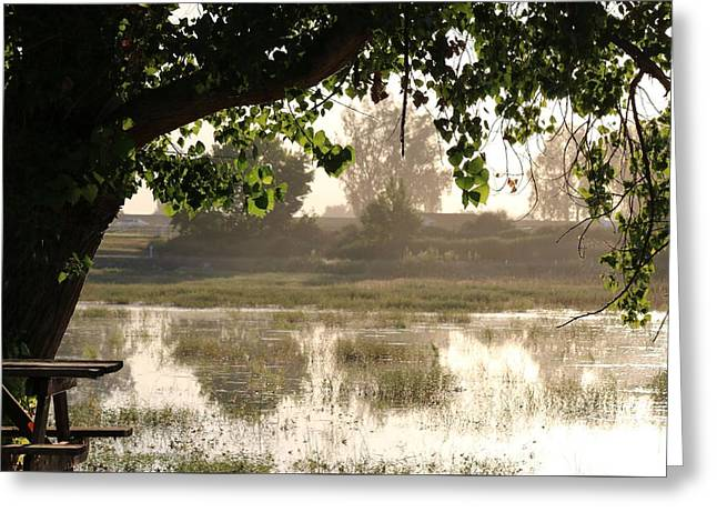 Morning Tranquility  Greeting Card