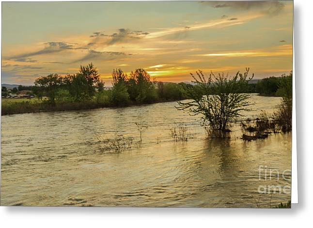 Morning View Of The Payette River Greeting Card by Robert Bales