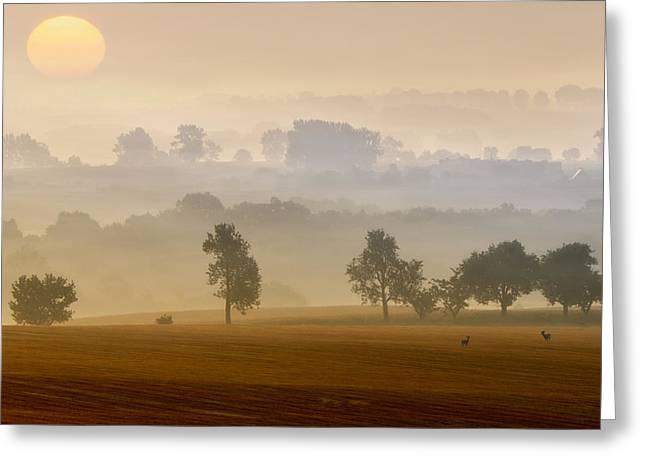 Morning View Greeting Card by Piotr Krol (bax)