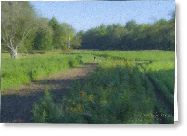 Morning Walk At Langwater Farm Greeting Card