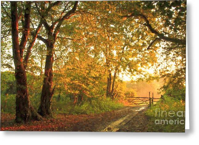 Morning Warm Light Greeting Card by Veikko Suikkanen