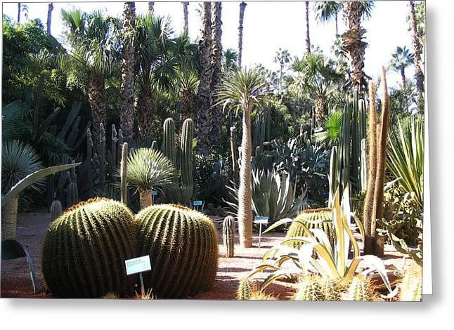 Morocco Majorelle Gardens 03 Greeting Card