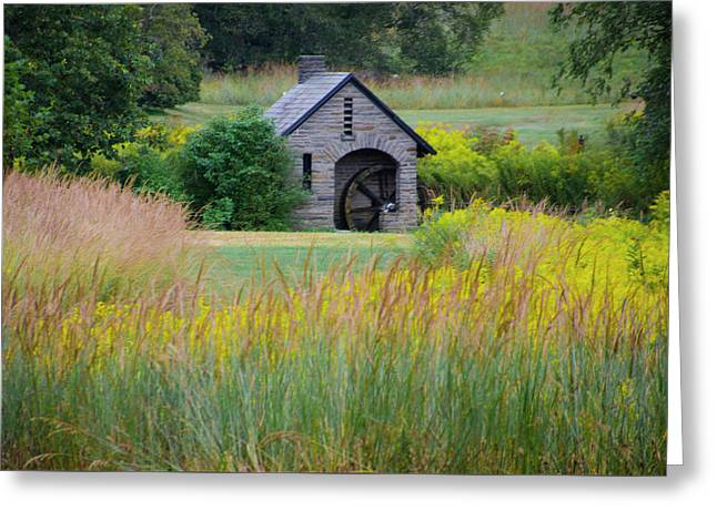 Greeting Card featuring the photograph Morris Arboretum Mill In September by Bill Cannon