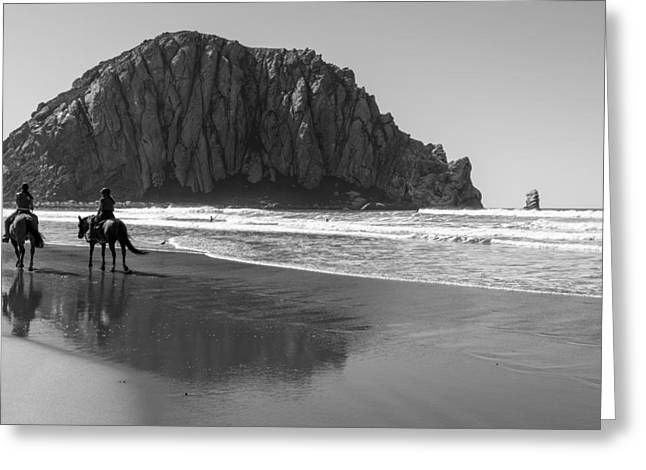 Morro Rock And Horses Black And White Greeting Card by John McGraw