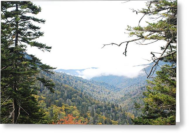 Morton Overlook Smoky Mountains Greeting Card by Classic Color Creations