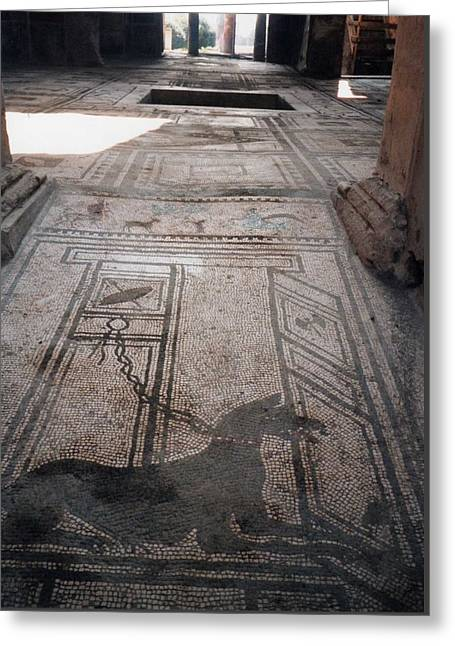 Mosaic In Pompeii Greeting Card by Marna Edwards Flavell