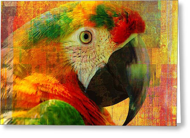 Mosaic Macaw 2016 Greeting Card