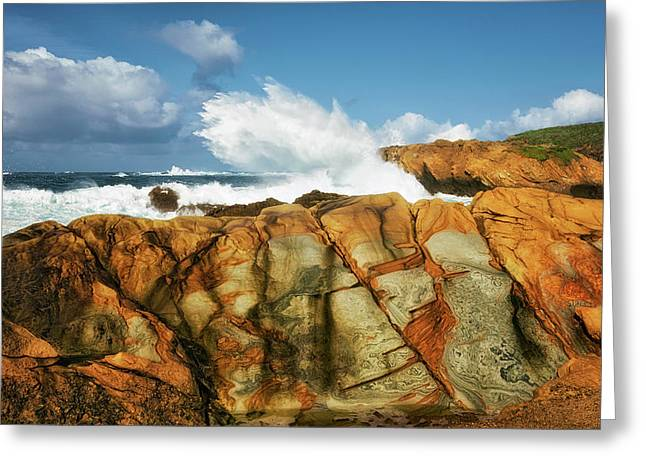 Mosaic Patterns Among The Sandstone Cliffs At Point Lobos. Greeting Card by Larry Geddis