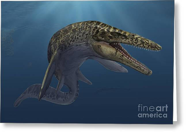Mosasaurus Hoffmanni Swimming Greeting Card by Sergey Krasovskiy