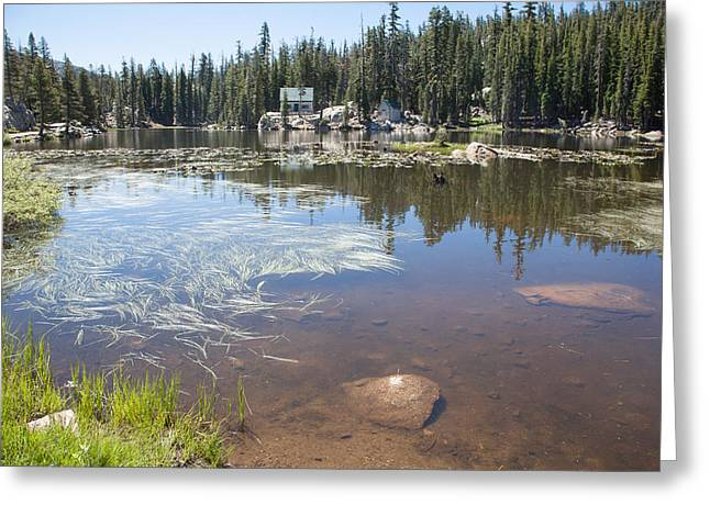 Ebbetts Pass Greeting Cards - Mosquito Lake Greeting Card by Computer Variations