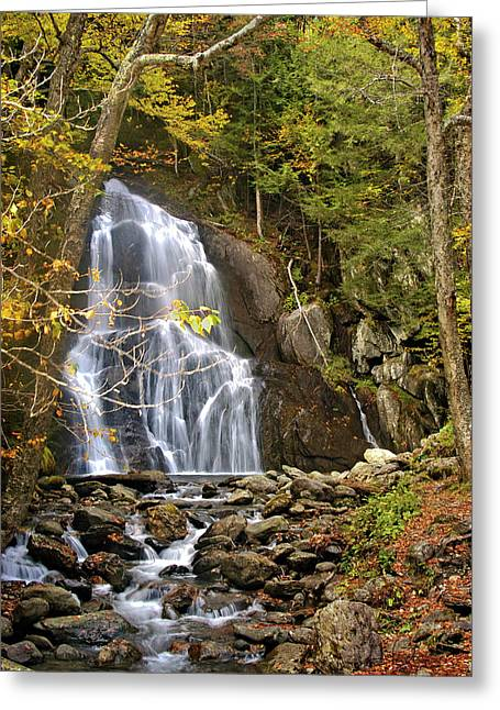 Moss Glen Falls Greeting Card