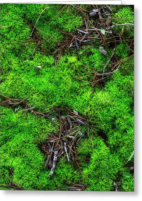 Greeting Card featuring the photograph Moss On The Hillside by Mike Eingle