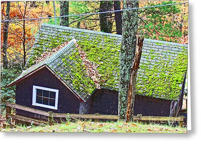 Moss Roof Greeting Card by Beebe  Barksdale-Bruner