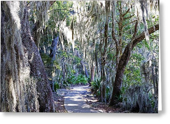 Walk Paths Greeting Cards - Moss Walk Greeting Card by Kenneth Albin