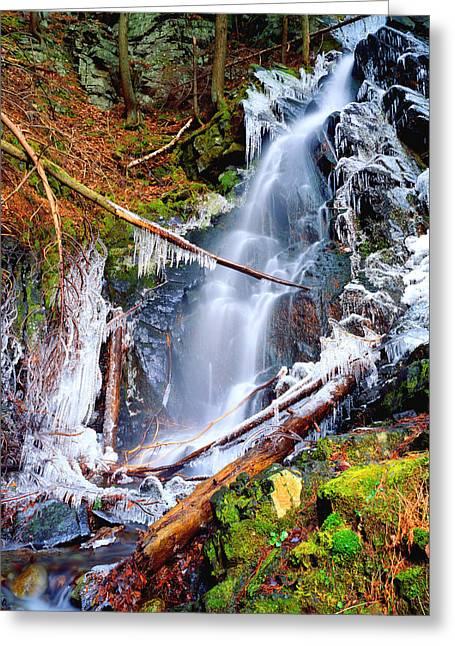 Mossy Cascade Falls Greeting Card