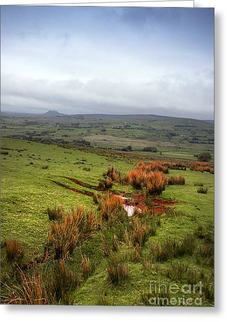Mossy Hills Greeting Card