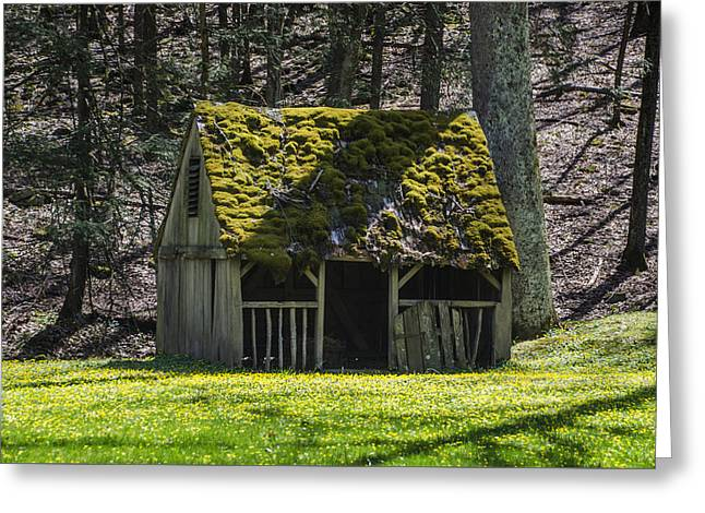 Mossy Manger In Spring Greeting Card by Bill Cannon