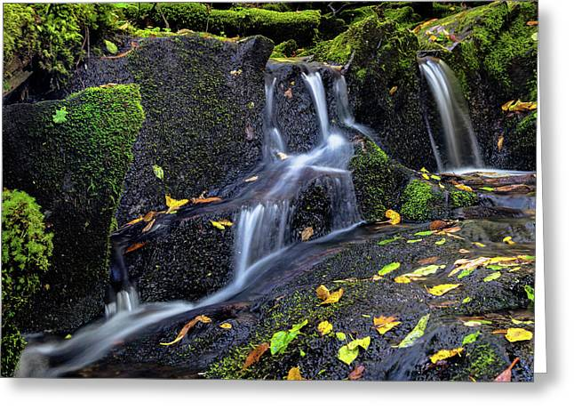 Emerald Cascades Greeting Card