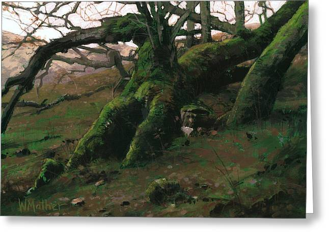 Mossy Oak Greeting Card by Bill Mather
