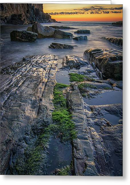 Mossy Rocks At Bald Head Cliff  Greeting Card