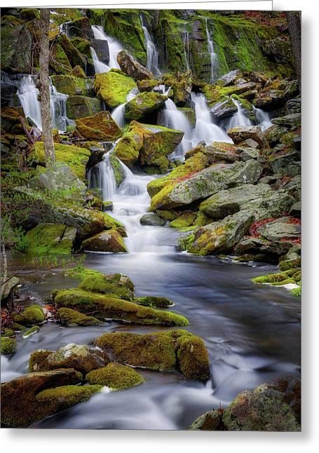 Mossy Rocks Falls Portrait Greeting Card by Bill Wakeley