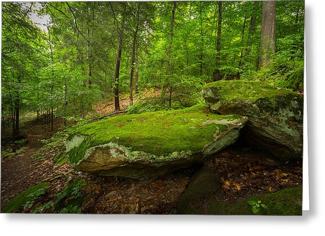 Mossy Rocks In Little Creek Park Greeting Card