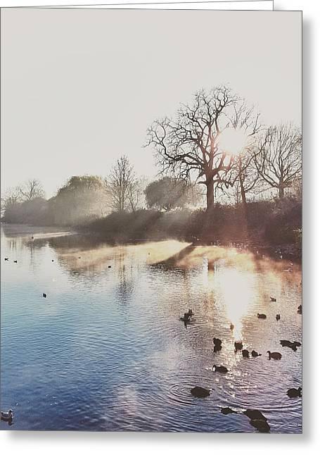 Mote Park Winter Morning  Greeting Card by Stuart Ellesmere