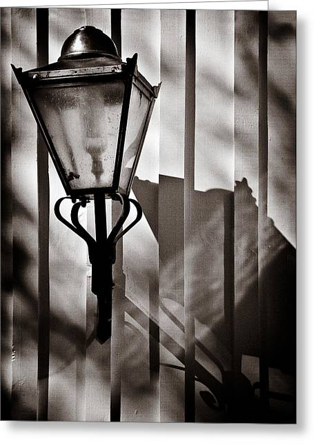 Moth And Lamp Greeting Card by Dave Bowman