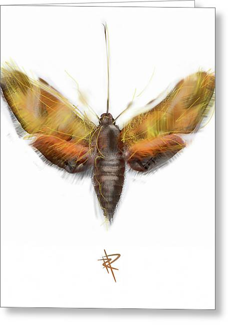 Transformations Digital Greeting Cards - Moth Greeting Card by Russell Pierce