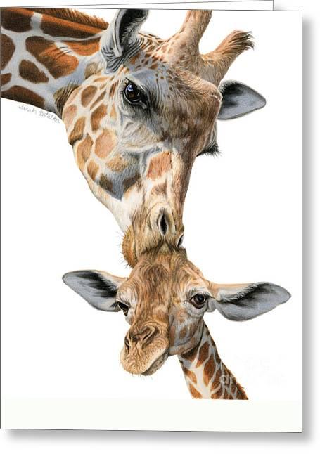 Mother And Baby Giraffe Greeting Card by Sarah Batalka