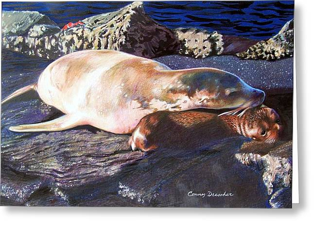 Sea Lions Mixed Media Greeting Cards - Mother and Child Sea Lion Greeting Card by Constance Drescher
